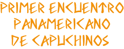 Panamerica OFMCAP 2020